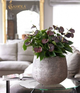 secrets of making bouquets for men2