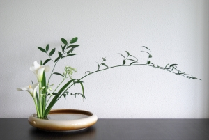 ikebana-pgoto